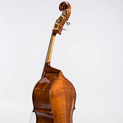 Roberto Salvianti Double Bass 2018, Back