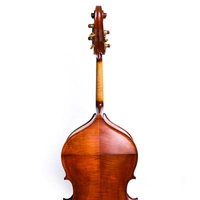 Roberto Salvianti Double Bass 2017, Back