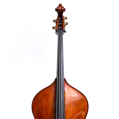 Roberto Salvianti Double Bass 2017, Front