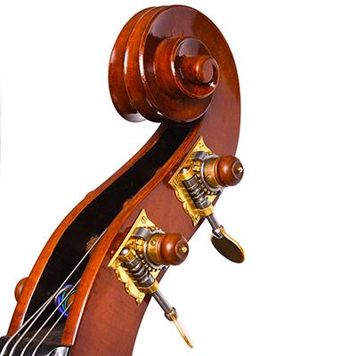 Roberto Salvianti Double Bass 2017, Scroll Close Up