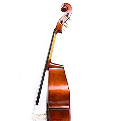 Roberto Salvianti Double Bass 2017, Side